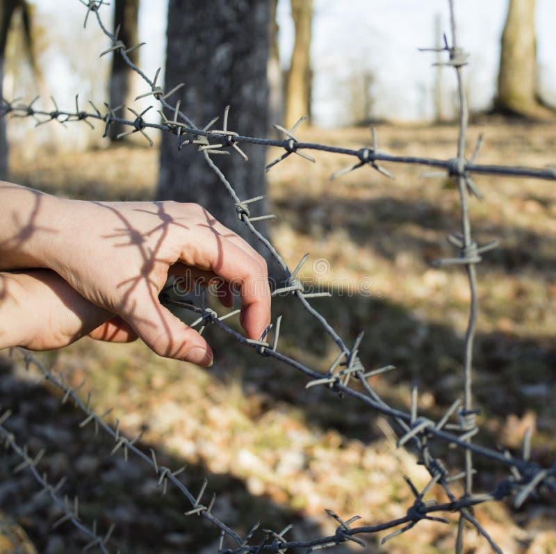 La mano del ` s de la mujer que sostiene la cerca del alambre de púas para el cautiverio emocional y quiere a la independiente imagen de archivo libre de regalías