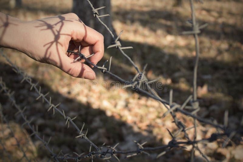La mano del ` s de la mujer que sostiene la cerca del alambre de púas para el cautiverio emocional y quiere a la independiente fotos de archivo libres de regalías