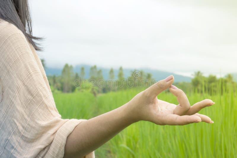 La mano della donna che fanno l'yoga e la meditazione sopra la natura si inverdiscono il campo immagini stock