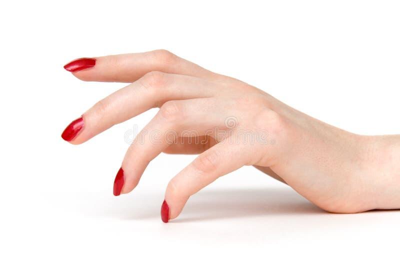 La mano della donna con colore rosso inchioda la vista laterale fotografie stock libere da diritti