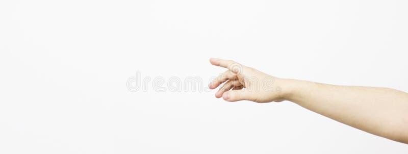 La mano della donna, fondo bianco, naturale, giovane, braccio dell'uomo isolato su fondo bianco la mano è raggiunge fuori per aff fotografia stock