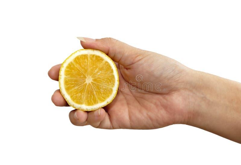La mano delle donne che tiene una metà di giallo limone fresco su un fondo bianco fotografie stock