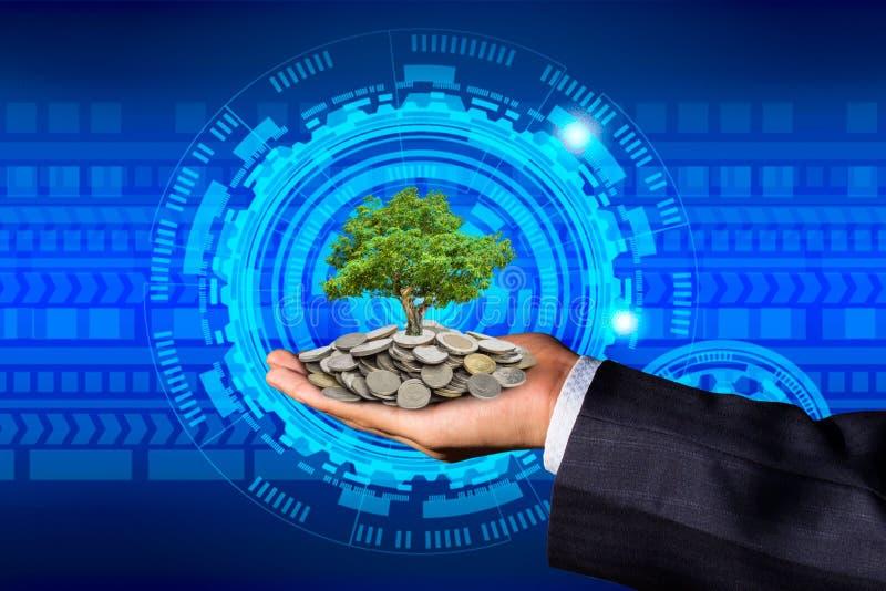 La mano di un uomo d'affari con le monete sulle suoi mani ed albero disposti sulle monete immagine stock libera da diritti