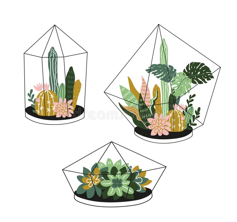 La mano dibujada contuvo las plantas tropicales de la casa Decoración casera escandinava del ejemplo del vector del estilo, moder libre illustration