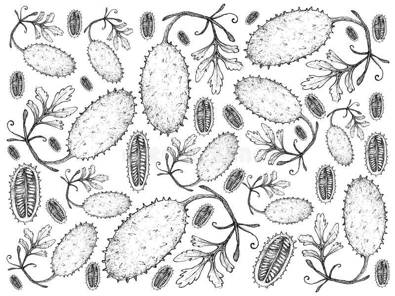 La mano dibujada del pepinillo indio del oeste fresco da fruto fondo ilustración del vector
