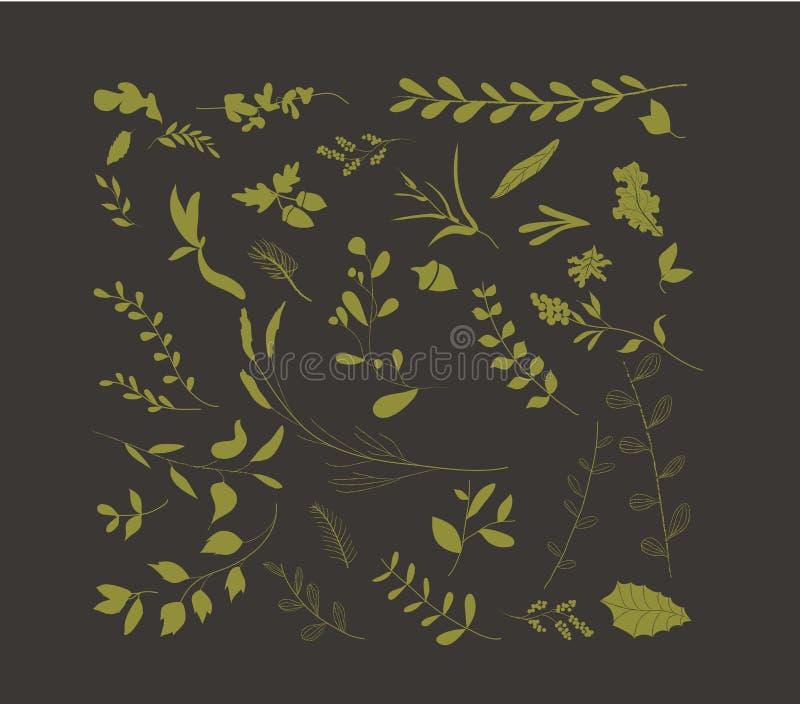 La mano dibujada hojea colección del otoño stock de ilustración