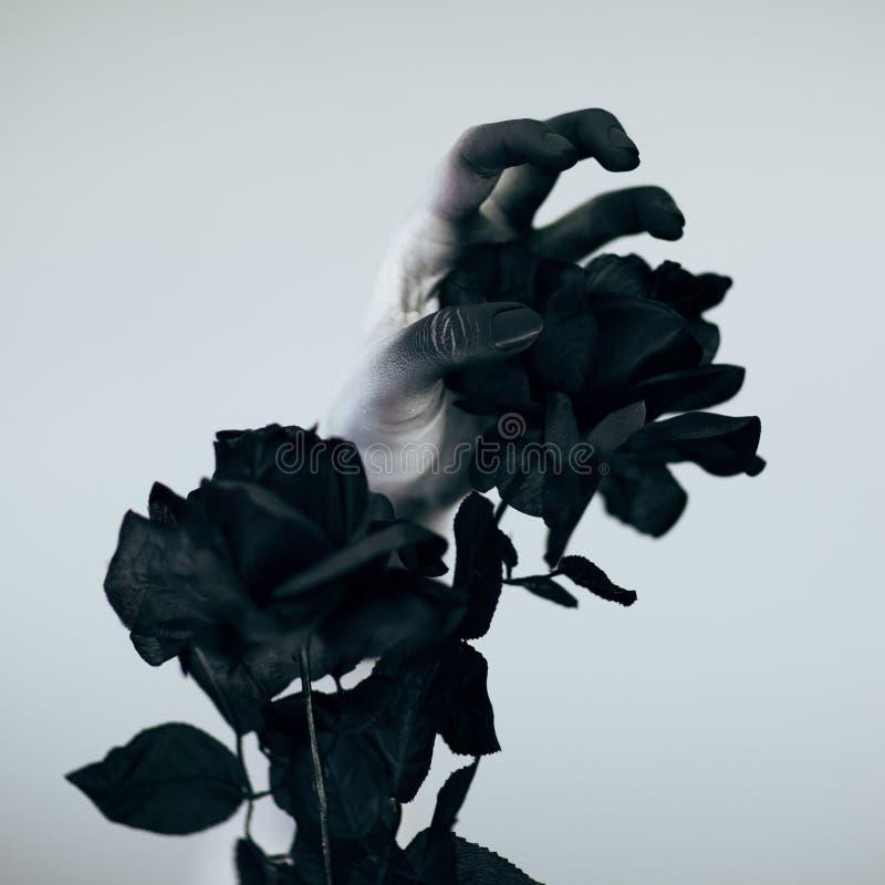 La mano espeluznante del monstruo de Halloween con blanco y el negro componen sostener la rosa negra imágenes de archivo libres de regalías