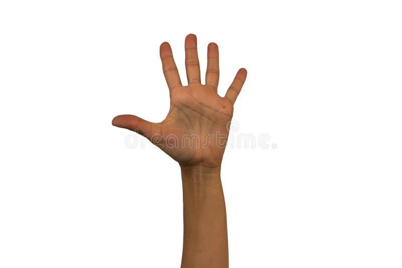 La mano femminile su un fondo bianco mostra i gesti differenti Isolante fotografie stock libere da diritti