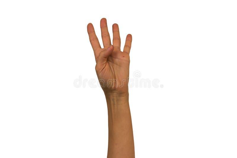 La mano femminile su un fondo bianco mostra i gesti differenti Isolante immagini stock libere da diritti
