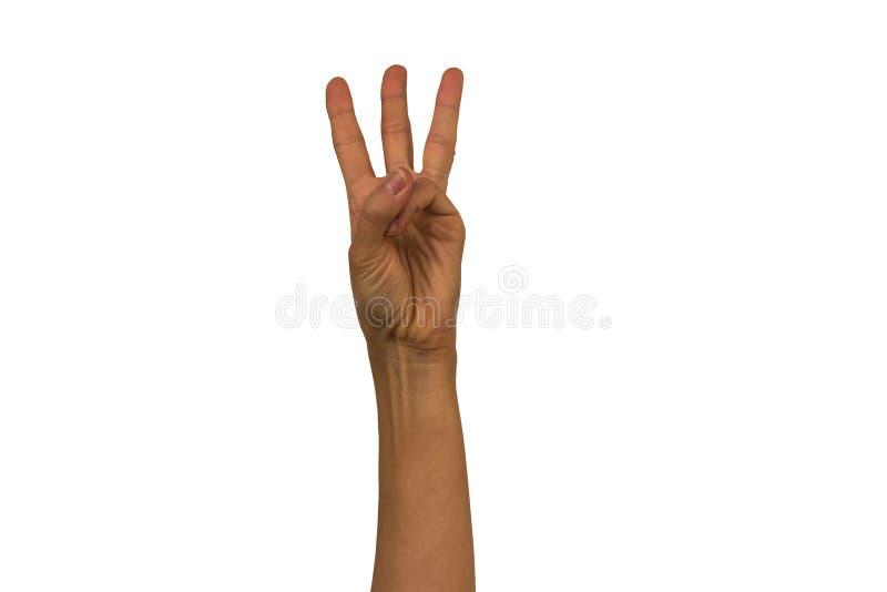 La mano femminile su un fondo bianco mostra i gesti differenti Isolante immagine stock