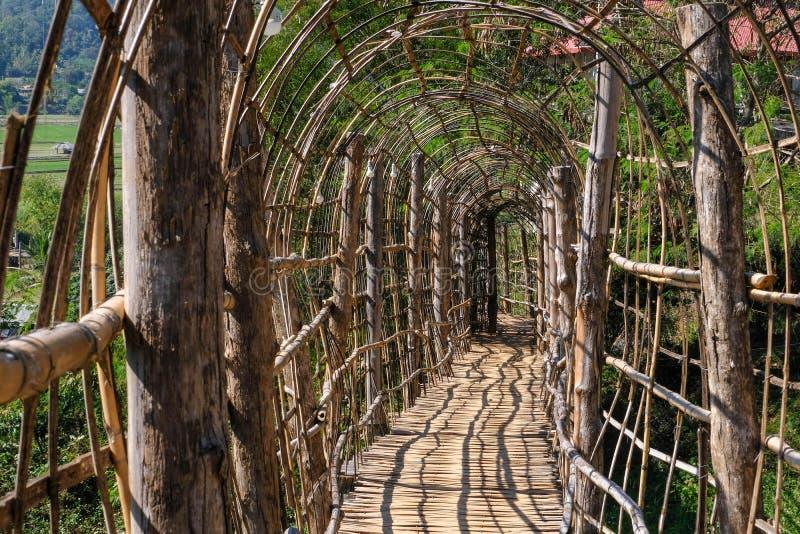 la mano hermosa del waywalk de bambú de madera del puente hace el puente en Su Tong Pae Mae Hong Son foto de archivo libre de regalías