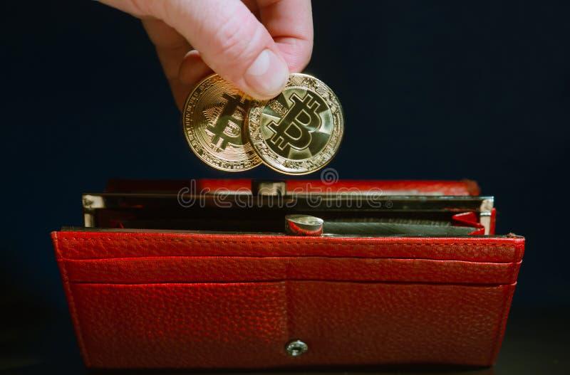 La mano humana puso en color oro largo rojo del bitcoin de las monedas de la cartera dos fotografía de archivo