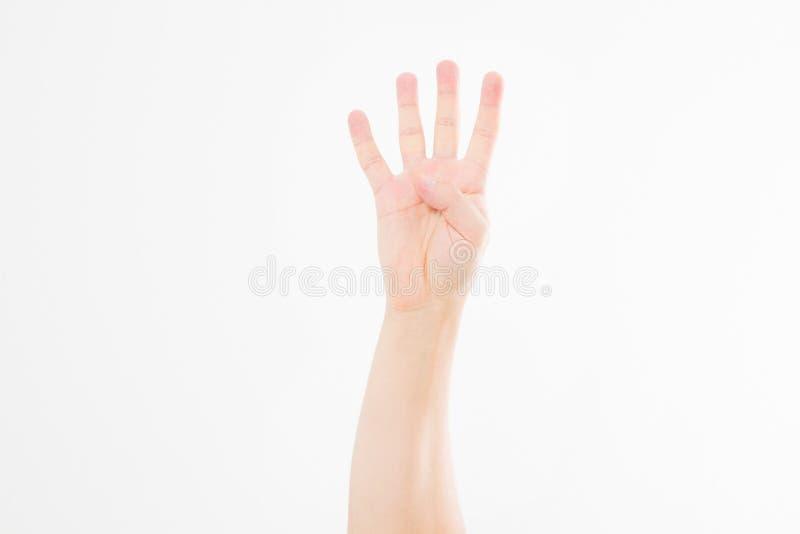 La mano maschio mostra quattro dita Gesto braccio caucasico Derisione su Copi lo spazio mascherina blank fotografia stock