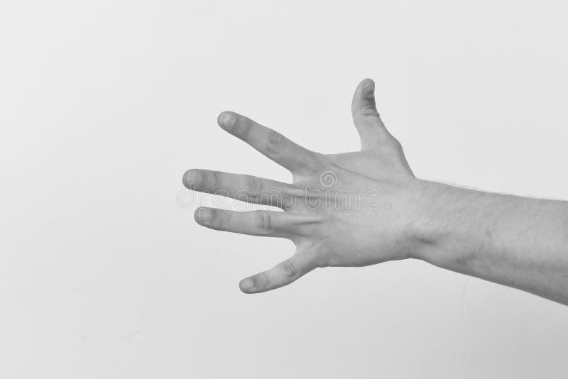 La mano masculina muestra cuatro fingeres El gesto de mano expresa números Cuenta abajo y concepto no verbal de la comunicación foto de archivo libre de regalías