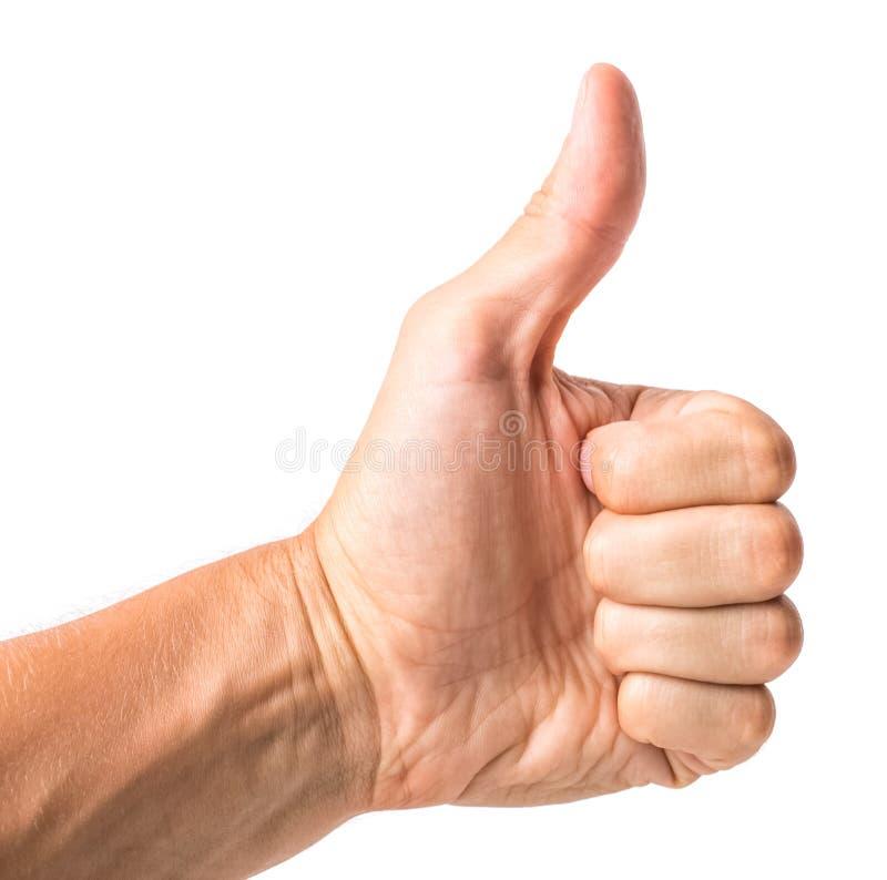 La mano masculina que muestra los pulgares sube la muestra contra el fondo blanco imagen de archivo