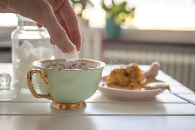 La mano mette lo zucchero in tazza immagine stock