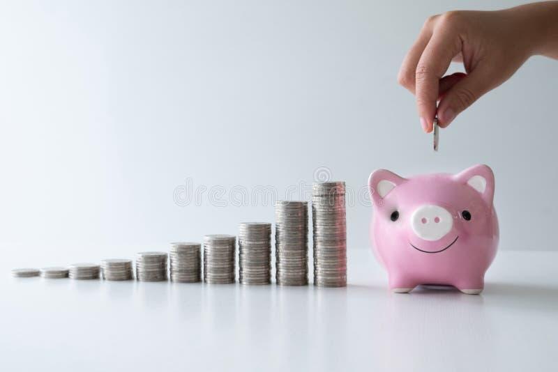 La mano que pone la moneda en la hucha rosada con el gráfico de las monedas, intensifica comienzo encima del negocio al éxito, ah imagen de archivo