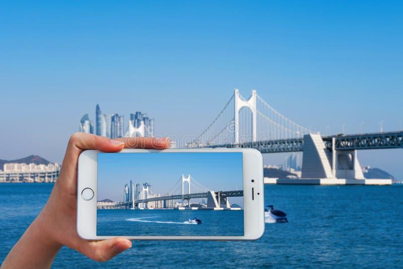 La mano que sostiene el teléfono elegante toma una foto en el puente de Gwangan imágenes de archivo libres de regalías