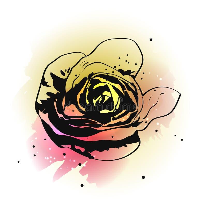 La mano que subi? la tinta exhausta flor en acuarela salpica en el fondo blanco libre illustration