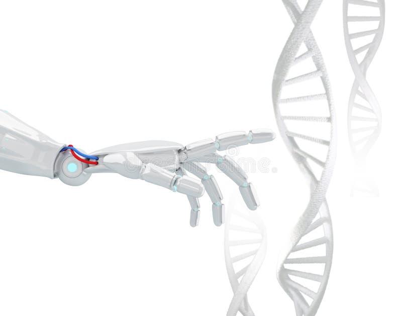 La mano robótica blanca toca la cadena de la DNA representación 3d imagen de archivo libre de regalías