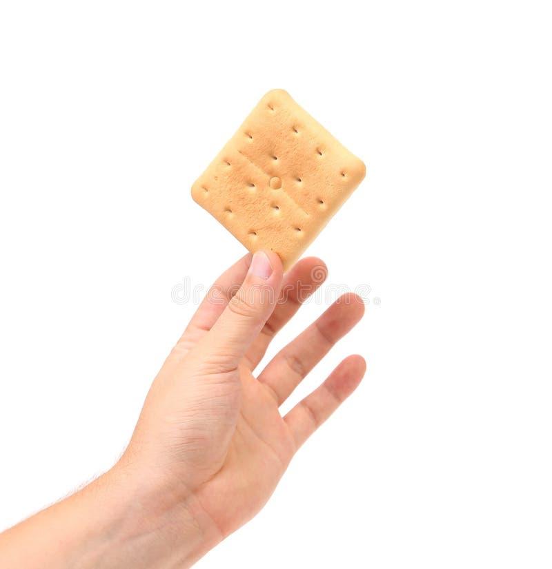La mano sostiene la galleta. fotos de archivo