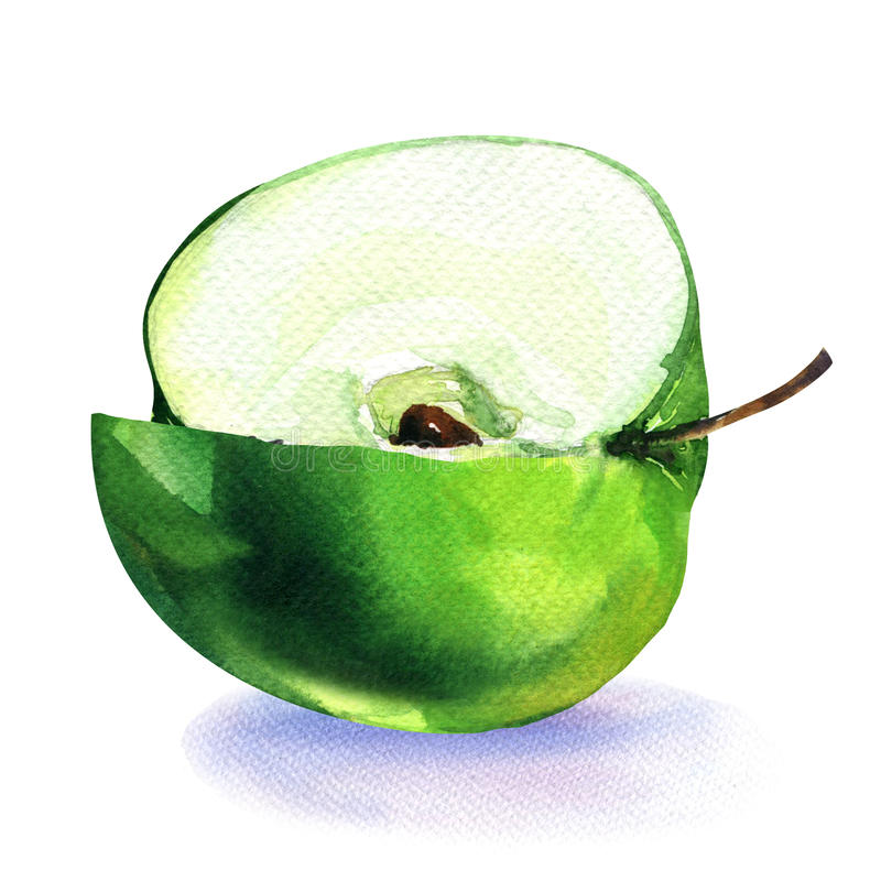 La manzana verde cortó el pedazo cuarto aislado en blanco ilustración del vector