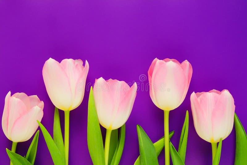 La maqueta de la boda con la lista y el tulipán de papel rosados florece en la opinión de sobremesa azul Floral hermoso estilo pl fotos de archivo libres de regalías