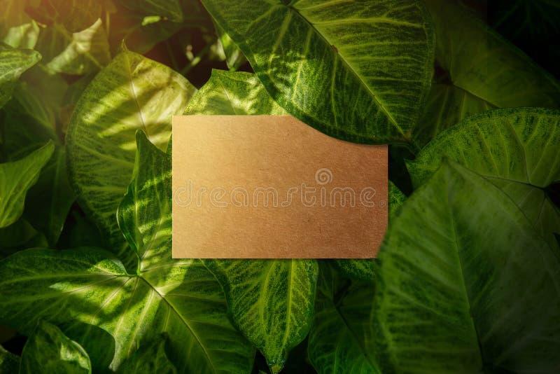 La maqueta de la tarjeta de visita, arte recicla la visión de papel, superior, espacio en blanco foto de archivo
