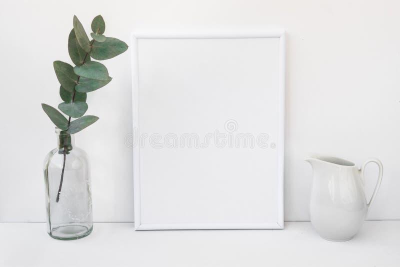 La maquette blanche de cadre, branche d'eucalyptus dans la bouteille en verre, broc, a dénommé l'image propre minimaliste images stock