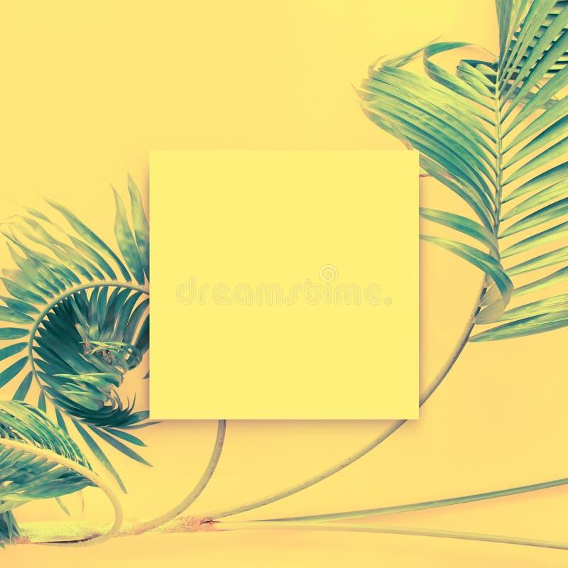 La maquette vide papar blanche de brochure a isolé blanc photo stock