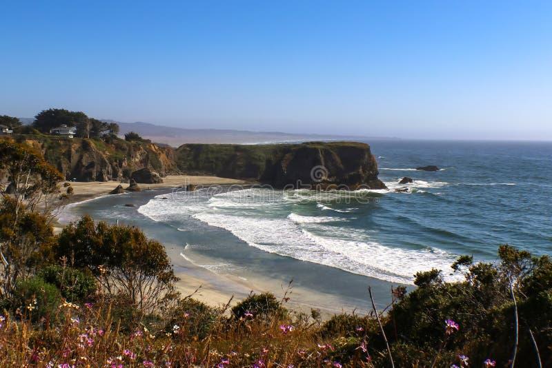 La marea arriva a fiumi alla riva intorno ad una baia ed al promontorio a sud di Mendicino la California con i fiori porpora defo fotografia stock libera da diritti