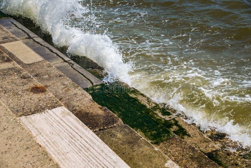 La marea del mar del océano que se rompía sobre la alga marina de piedra cubrió pasos imágenes de archivo libres de regalías