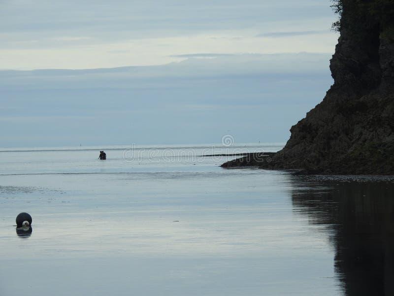 La marea viene adentro foto de archivo libre de regalías