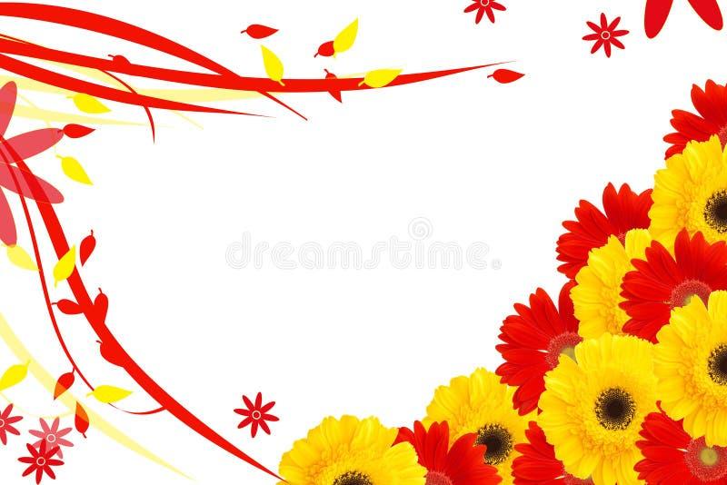 La margarita florece el medio marco ilustración del vector