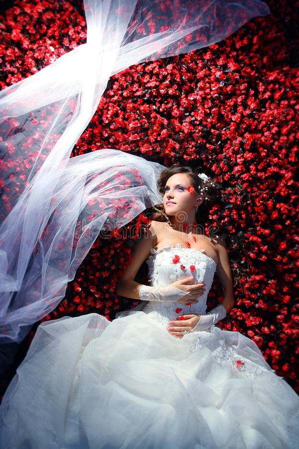 La mariée dans la robe s'assied à l'arbre brun photographie stock libre de droits
