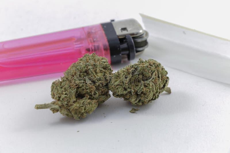 La marijuana germoglia con le carte di rotolamento e un accendino fotografia stock libera da diritti