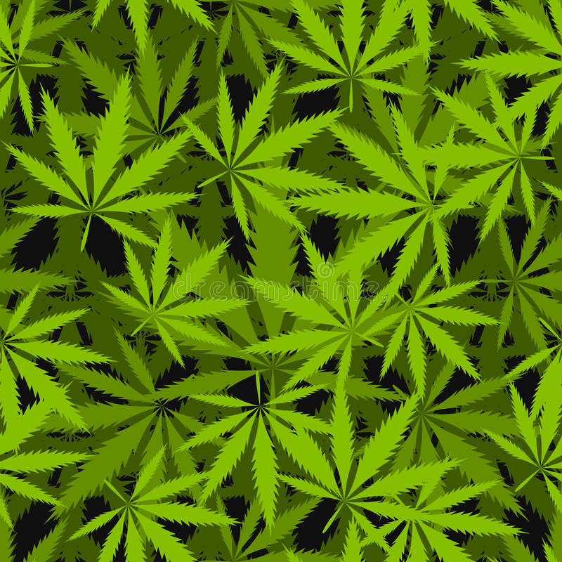 La marijuana part du modèle sans couture de vecteur illustration libre de droits