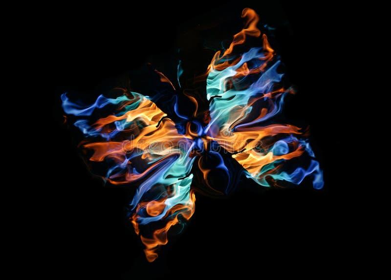 La mariposa ardiente fotografía de archivo libre de regalías