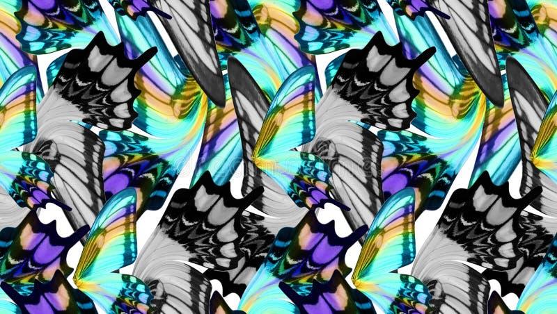 La mariposa colorida se va volando el fondo inconsútil foto de archivo