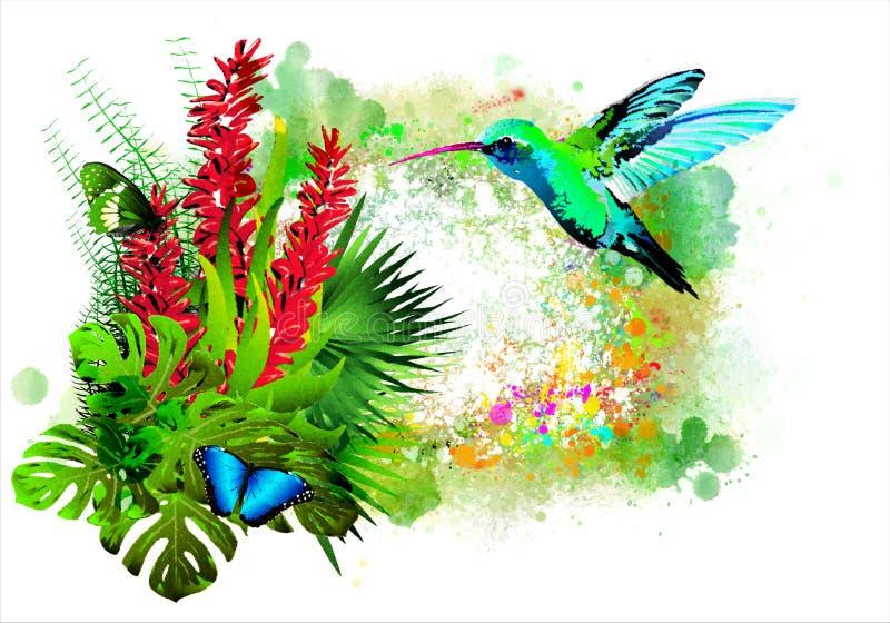 La mariposa hermosa con las flores tropicales y los colibríes azules en la pintura colorida salpica stock de ilustración