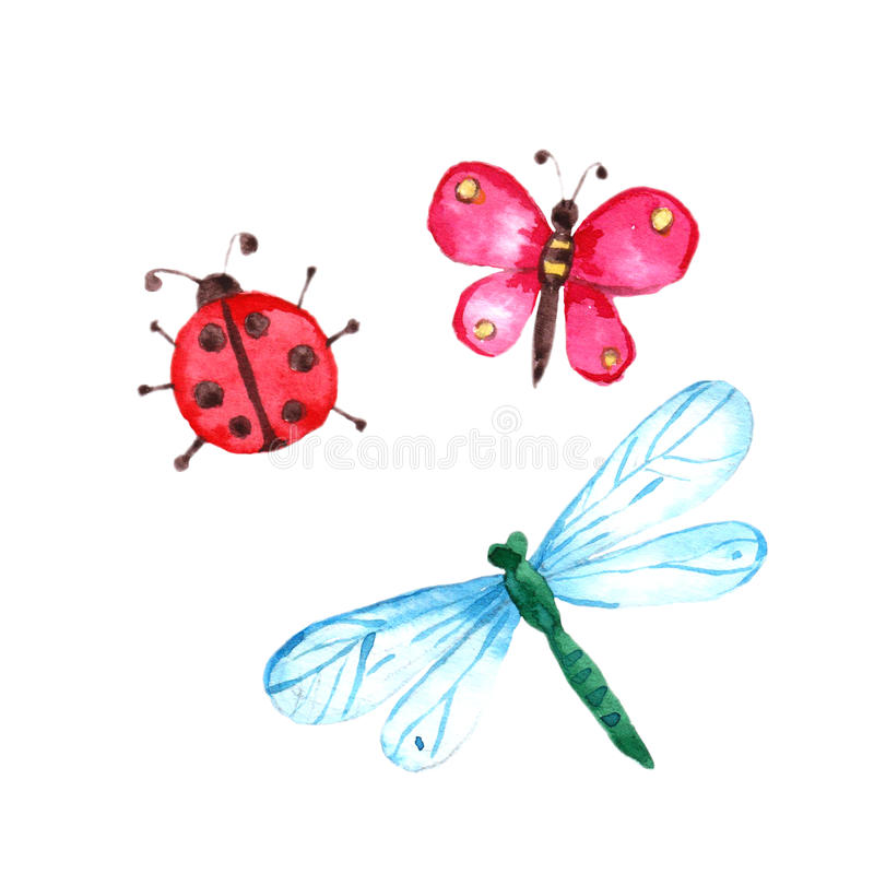 La mariposa, la libélula y la señora de la acuarela fastidian en el fondo blanco stock de ilustración