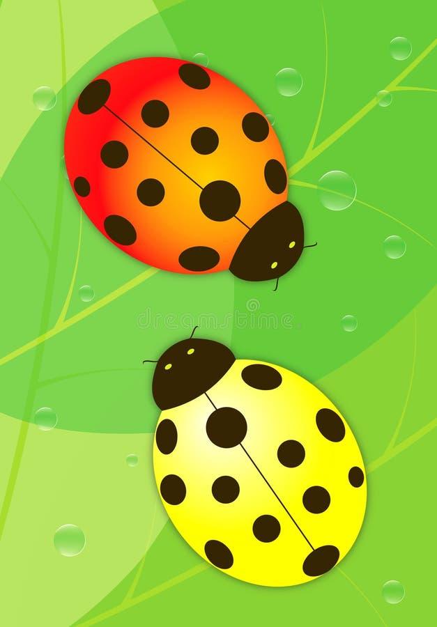 La mariquita roja y amarilla stock de ilustración