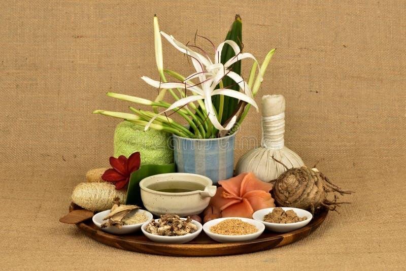 La maschera di protezione con il asiaticum di Crinum, foglie verdi si gelifica e l'erba tailandese ha medicina della proprietà fotografie stock libere da diritti