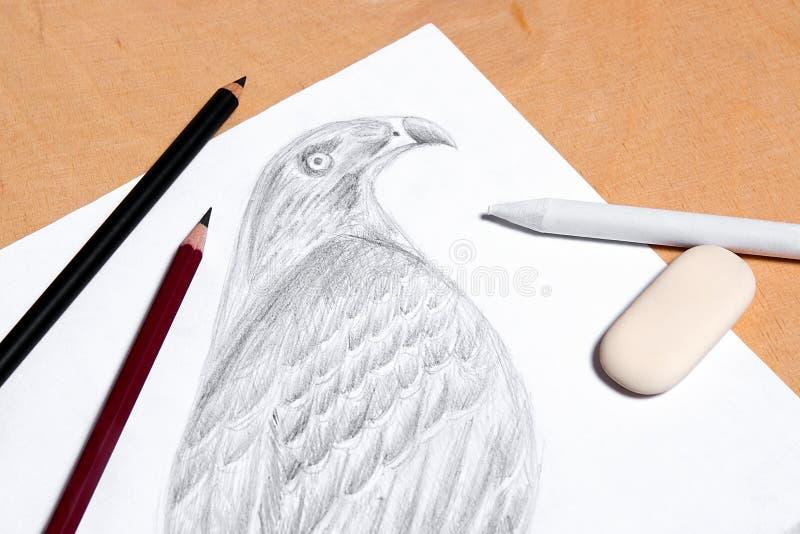 La matita, la gomma ed il bollo con il disegno della grafite hawk immagine stock libera da diritti