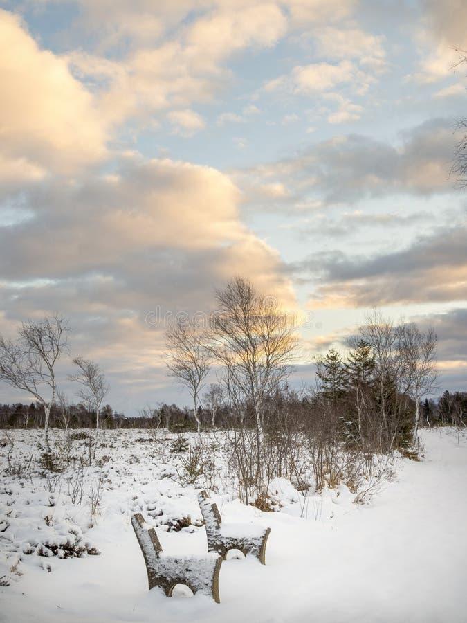 La mattina dell'inverno dentro attracca il ¼ di Kendlmà hlfilzen fotografia stock
