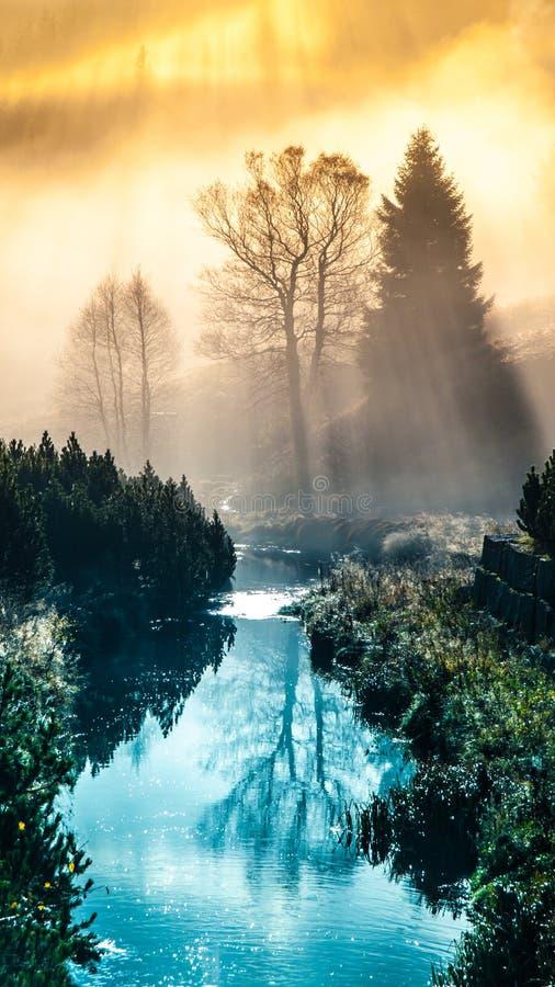 La mattina nebbiosa nelle montagne con il primo sole irradia Alberi riflessi nell'acqua immagini stock libere da diritti