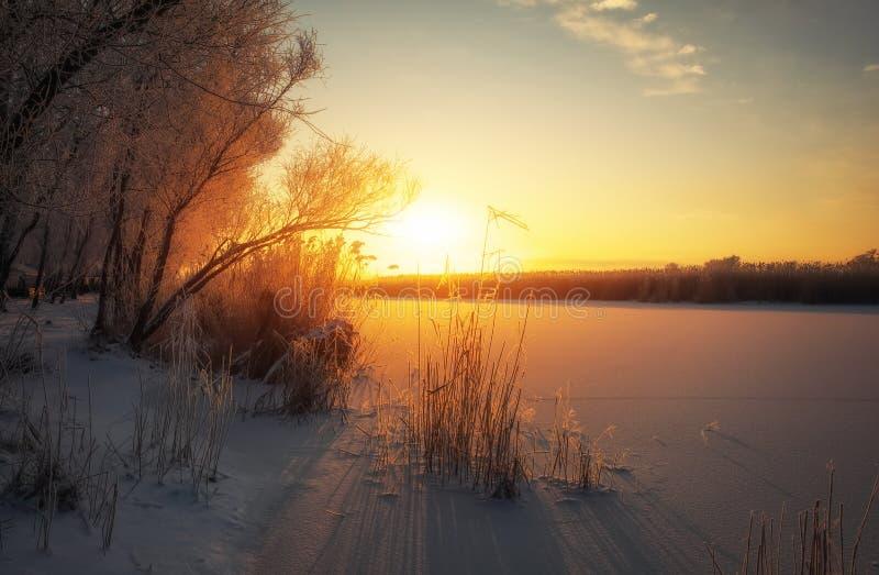 La mattina porta la nuova speranza Sera variopinta, sole luminoso sopra un fiume o lago immagini stock libere da diritti
