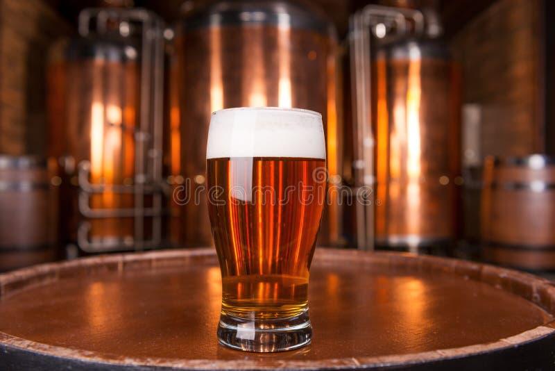 La meilleure bière en ville photo stock