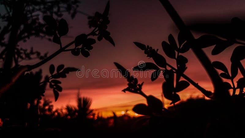 La mejor puesta del sol que usted ha visto nunca imágenes de archivo libres de regalías