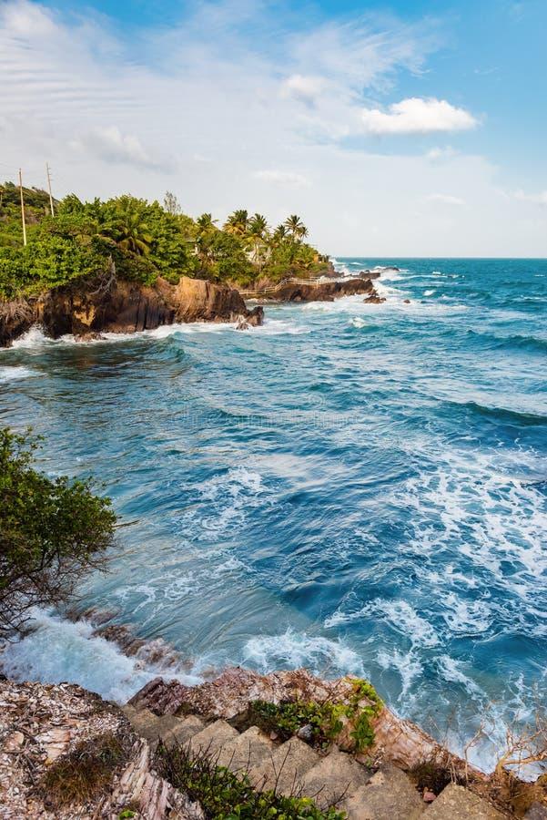La mer agitée de Toco Trinidad et du Tobago les Antilles échouent la vue de bord de falaise photos libres de droits